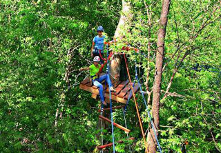 Rope and zipline obstacle course through the trees
