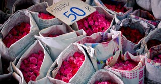 Flower Market (Pak Khlong Talad)