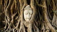 Thailand's former capital and contains many stunning historical sights
