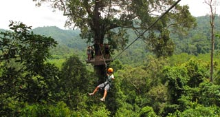 A treetop adventure across 5km of virgin jungle, streaming with wildlife